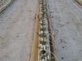 coltura-idroponica-agrisole-2