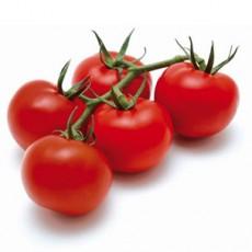 Pomodori Ciliegini